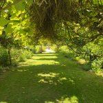 Allées engazonées aux jardins de Roquelin